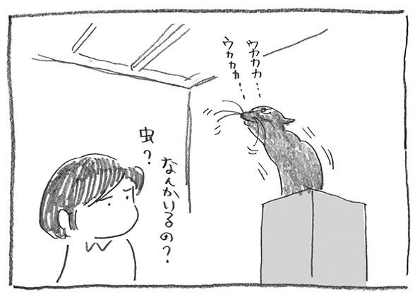 5-0127なんかいる