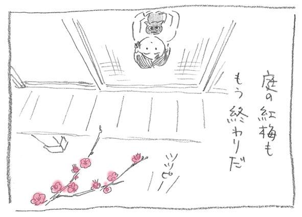 10-0128紅梅終わり