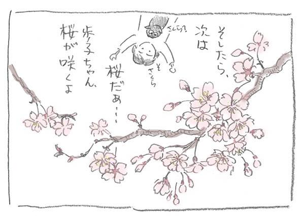 11-0128次桜