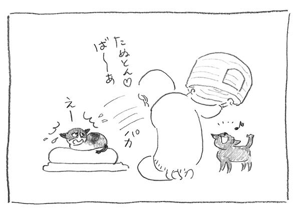 6-0130ば〜あ