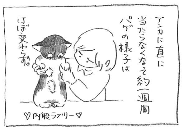 1-0210変わらず