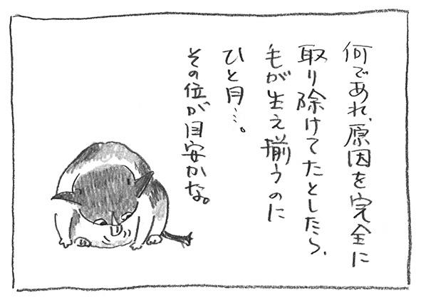 2-0210目安