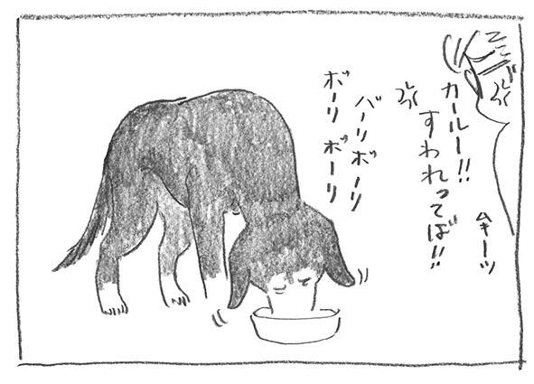 7-2011ばりぼり