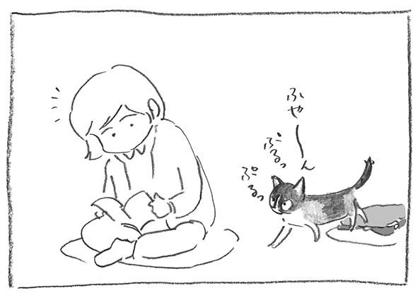 7-0212ふや〜ん
