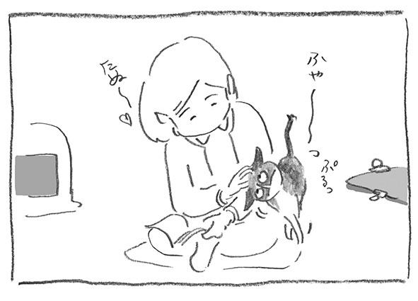 8-0212たぬ〜