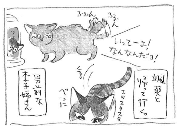 10-0218颯爽