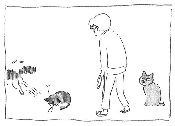 3-0219たぬプー