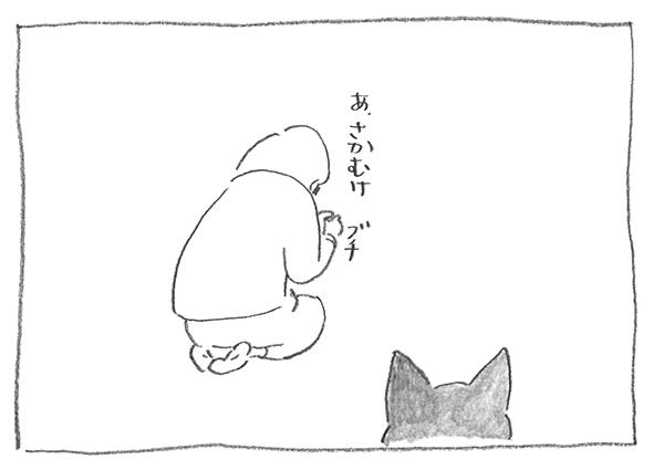 2-0221さかむけ
