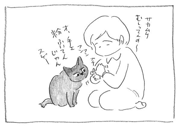 5-0221粉ふき