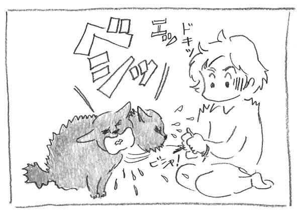 6-0221ベシッ