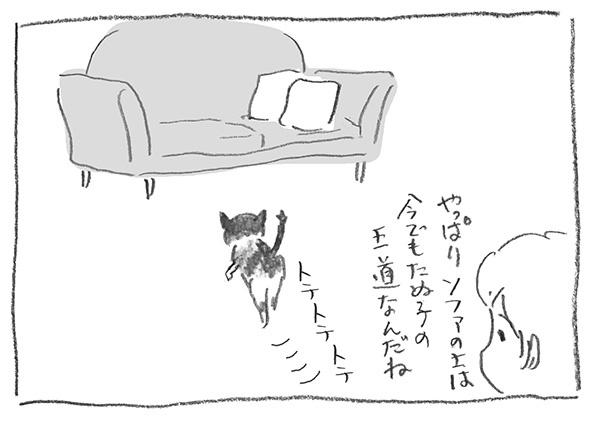 9-0222王道