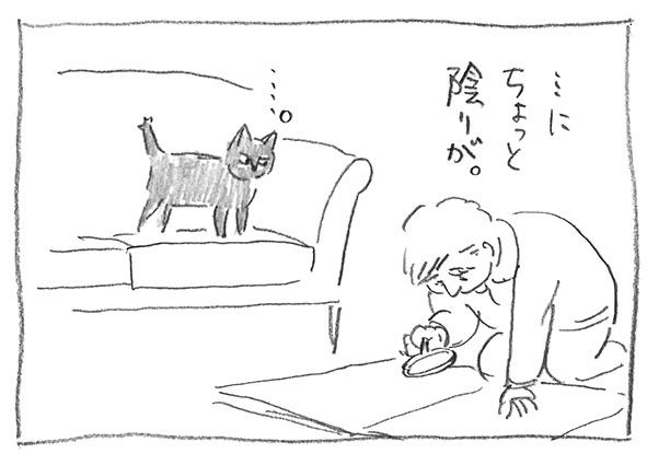 9-0223陰り
