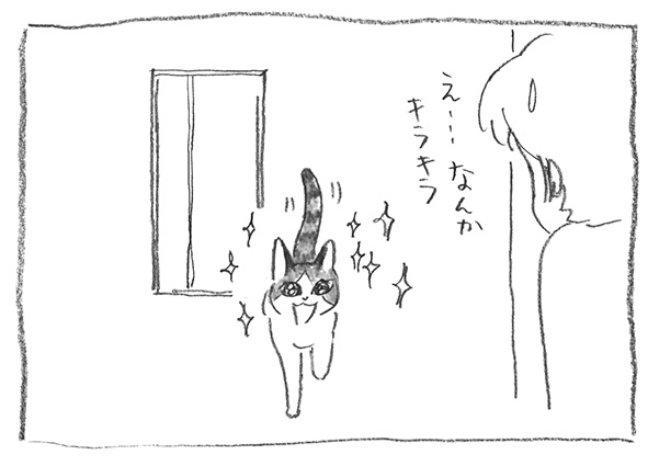 11-0224キラキラ