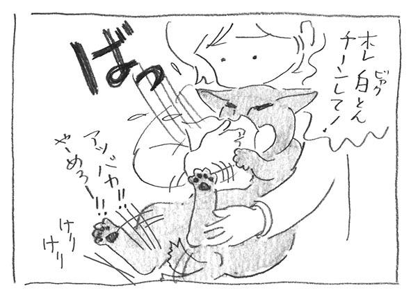 4-0225ほれチーン