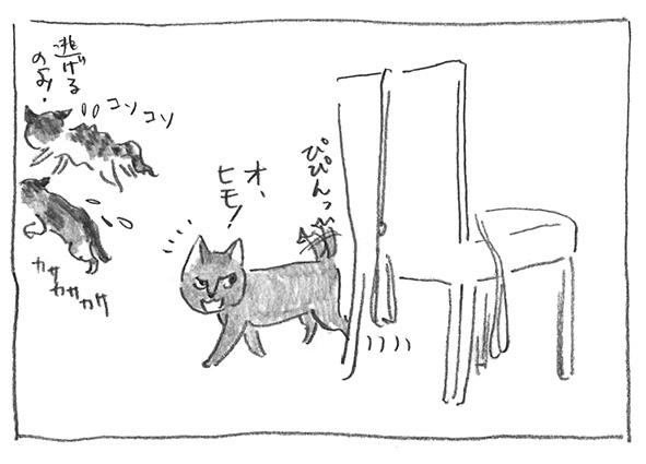 2-0226白登場