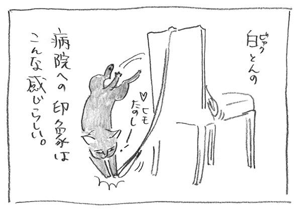 3-0226ヒモたのしー