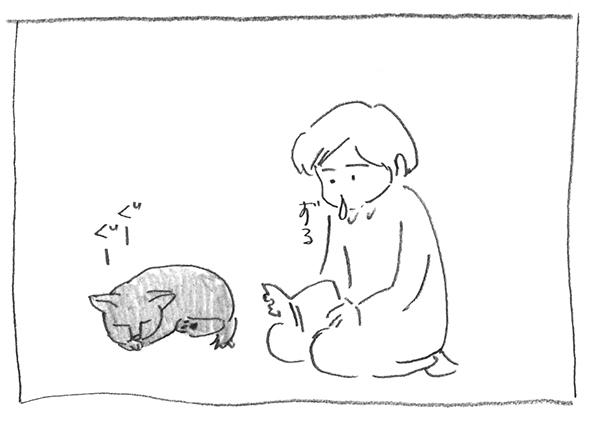 6-0226ずる