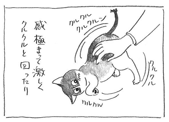 2-0227クルクル