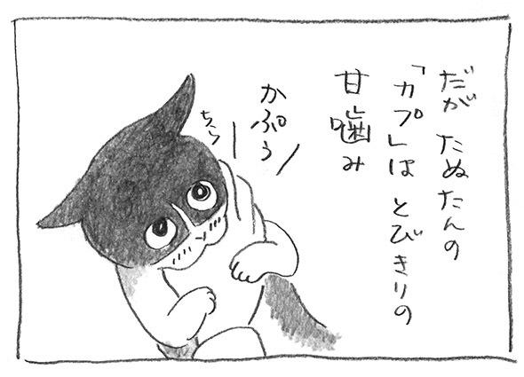 5-0227かぷかぷ