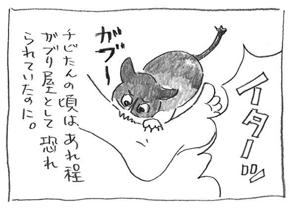 6-0227ガブガブ