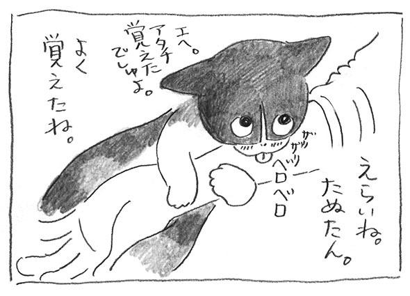 7-0227ザリザリ