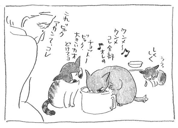 6-0228鍋ぐい