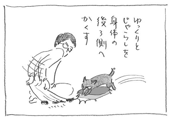 3-0229かくす