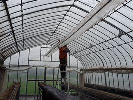 【写真】農園主がハウス内の土埃を水洗いしているところ