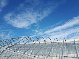 【写真】台風15号の強風でゆがんだパイプハウスの屋根の上に広がる青空