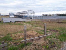 【写真】解体した資材がなくなった農園の様子(元受付ハウス正面付近)
