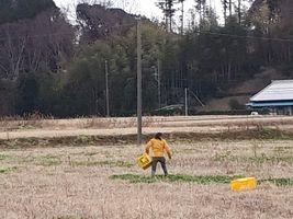 【写真】雨に備えて青い草を餌カゴに摘んでいるところ