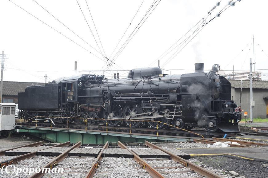 DSC_0007 - コピー2011 6 18 高崎車両センター871 579 popoman