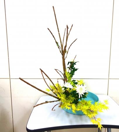 DSC01073_盛り花191115