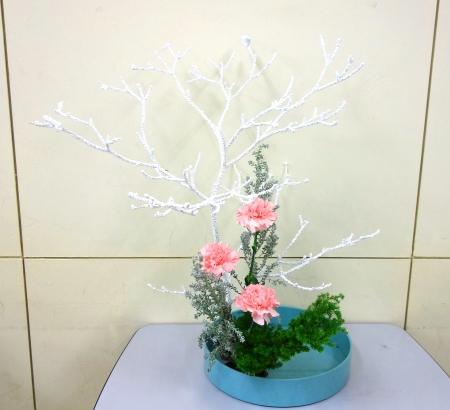 DSC01085_クリスマス花_191212