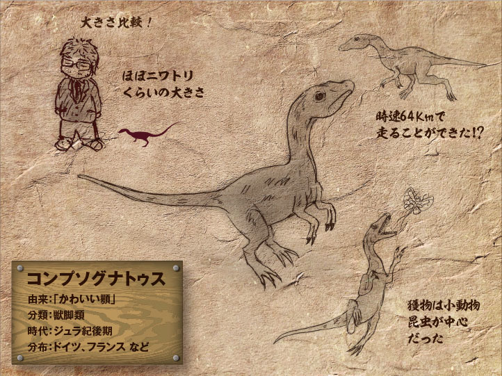 Compsognathus.jpg