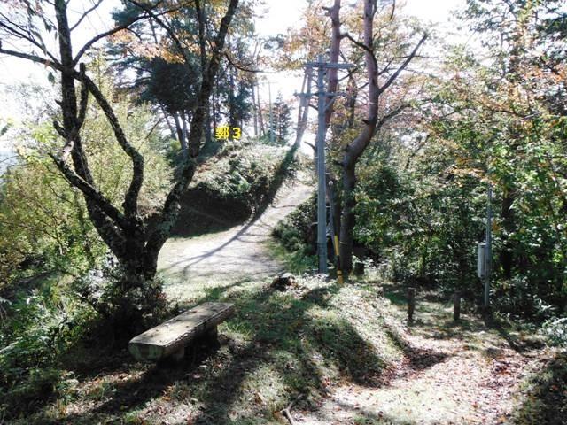 駒場城(阿智村) (83)