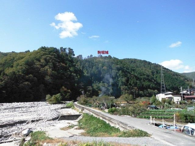 駒場城(阿智村) (100)
