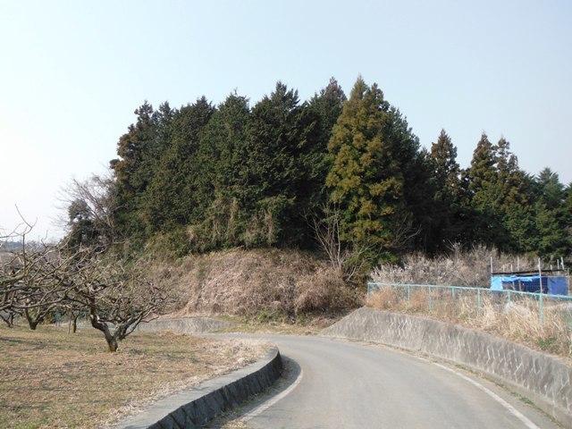 DSCF3879.jpg