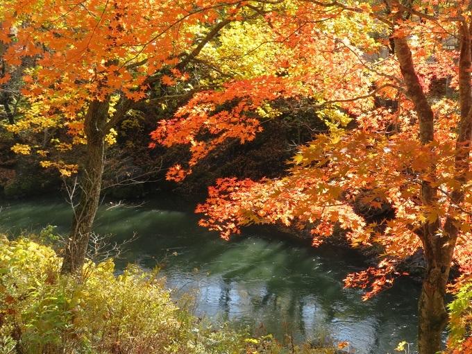 川と紅葉 (2)