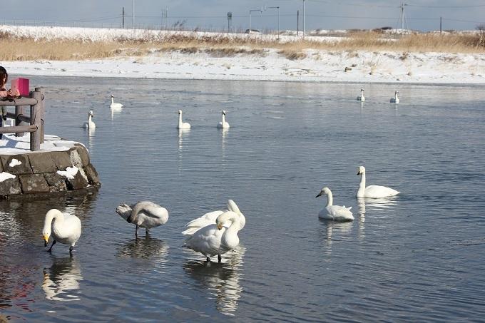 トーフツ湖