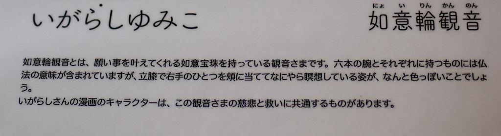 IMG_5081-2.jpg