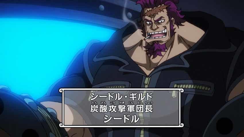 ワンピース アニメ シードル