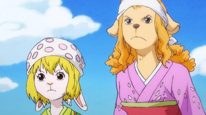 ワンピース アニメ キャロット