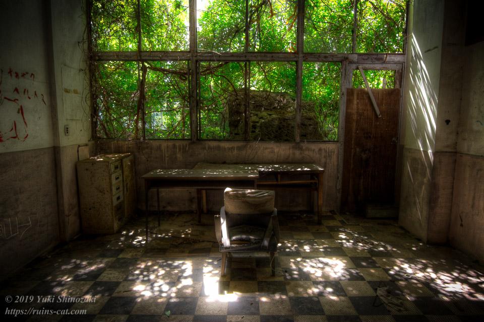 大浴場手前の合流部分。窓枠には蔦が絡まり、隙間から日の光が差し込んでいる。