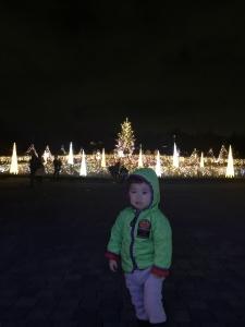 馬見丘陵公園20191224 003