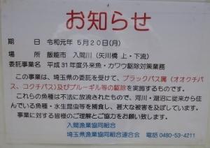 IMG_0913 (300x212)