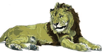 ライオンふにっ