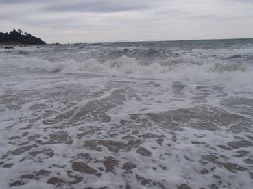 浜散歩14