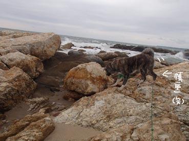 浜散歩20
