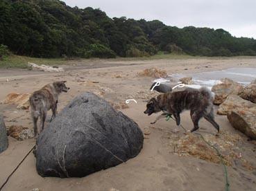 浜散歩23